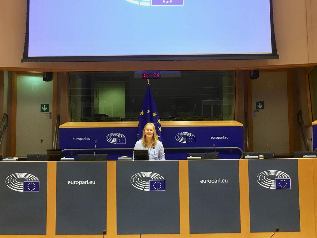 Im Europaparlament