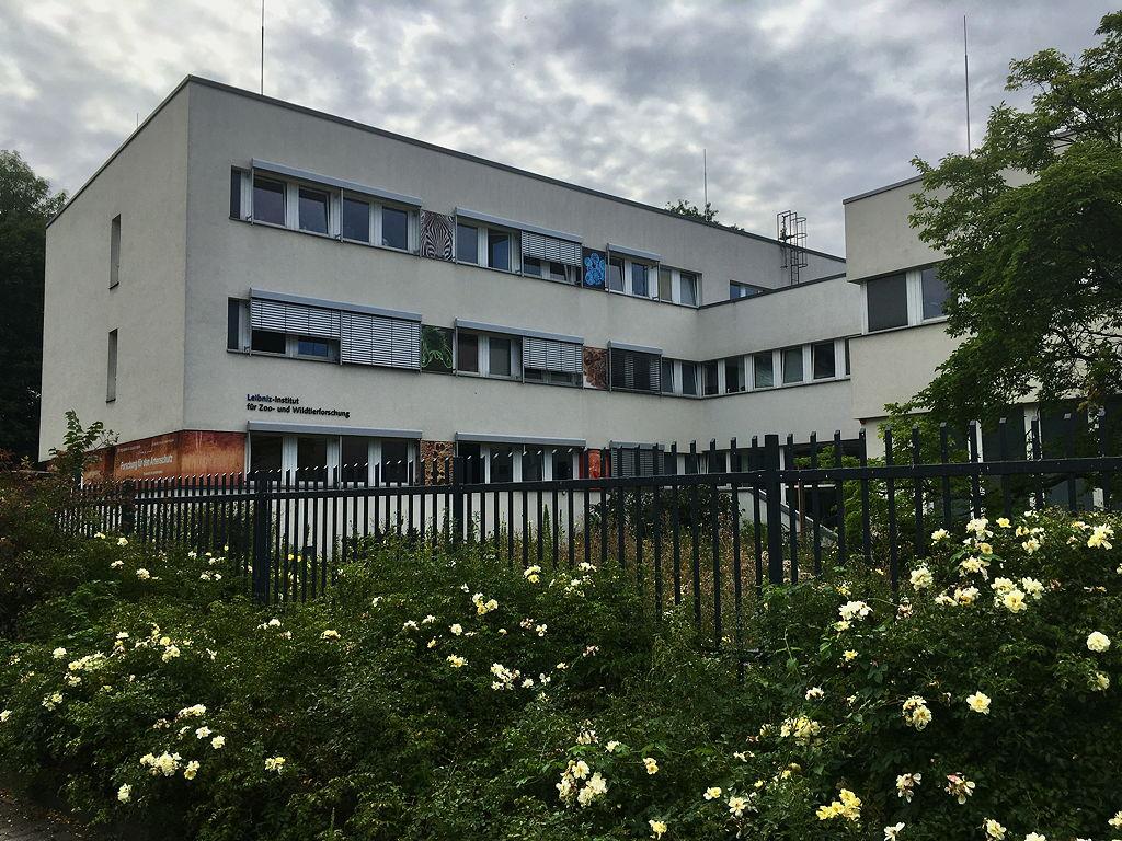Das Leibniz-Institut für Zoo- und Wildtierforschung in Berlin