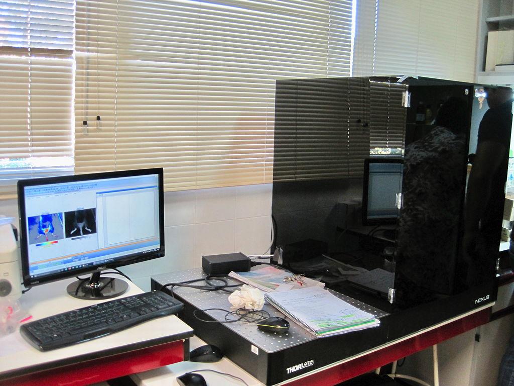 Die Wirkungsweise der Nanopartikel wurde durch genaue Beobachtungen und anschließende Analysen diskutiert und bewertet.