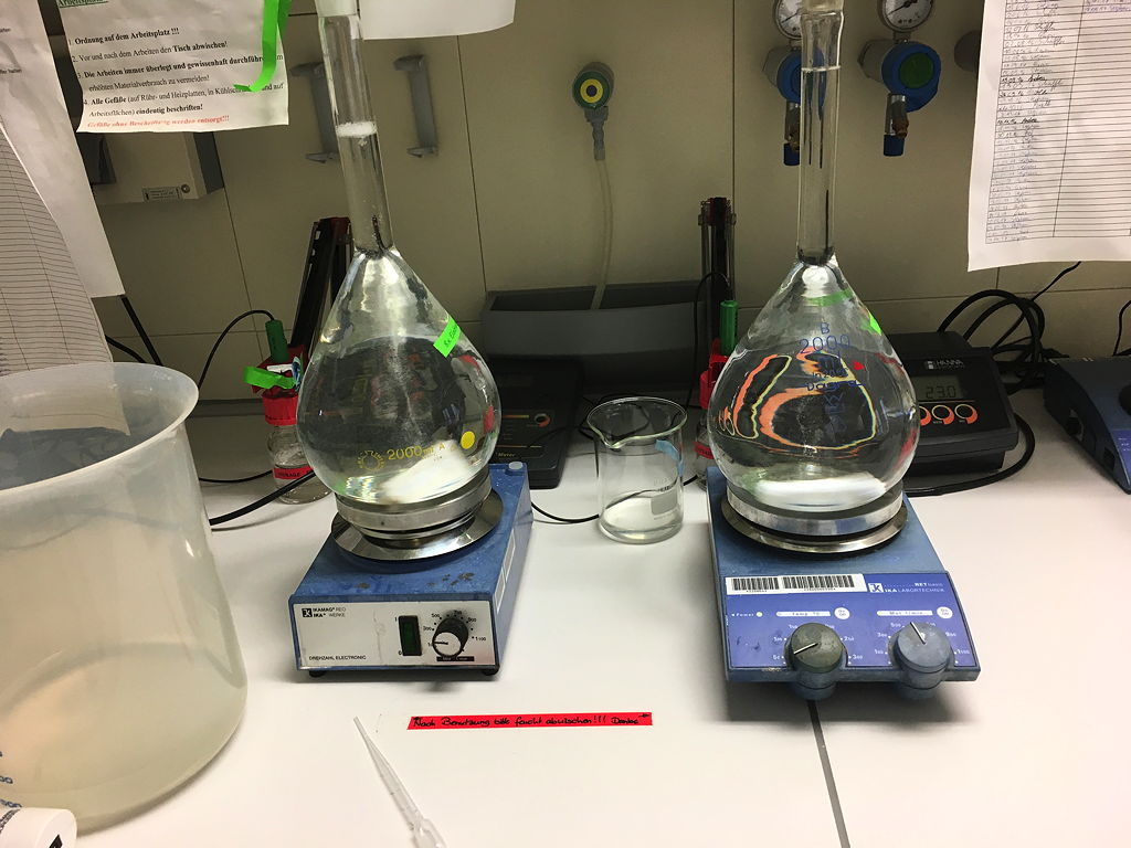 8x-Elektrodenpuffer ansetzen
