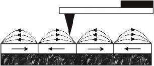 Magnetische Kraftmikroskopie (MFM)